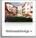Wellnessh�tv�ge